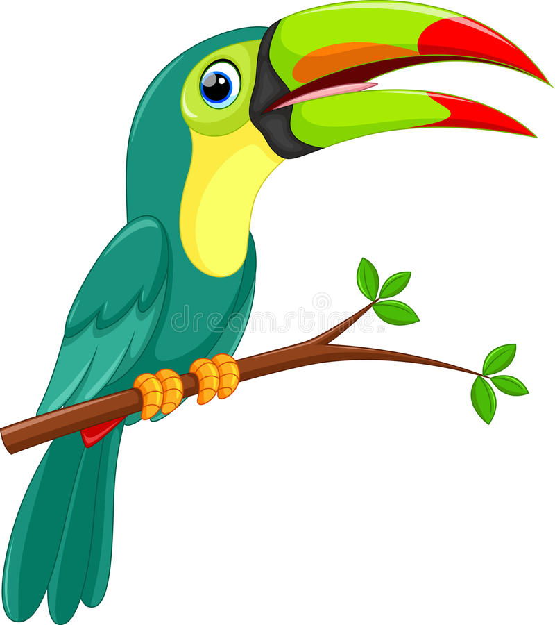 Милый toucan шарж птицы бесплатная иллюстрация