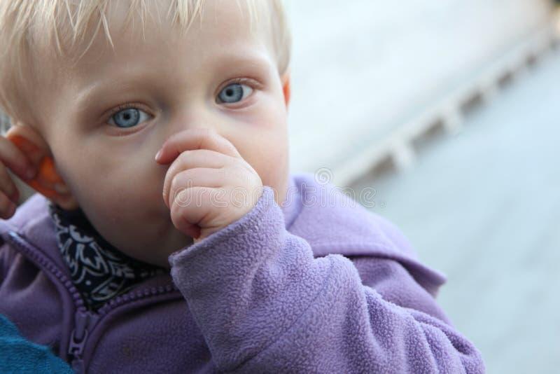 младенец всасывая большой пец руки стоковая фотография rf