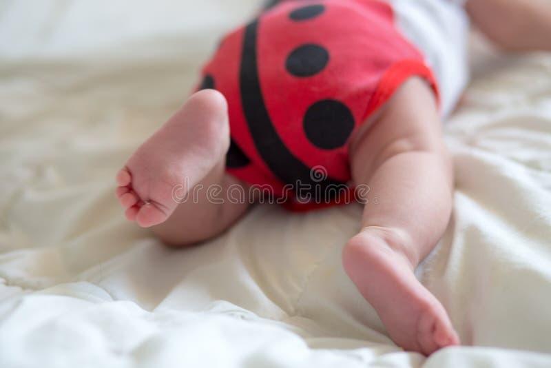 Младенец добычи в теле в форме ladybug Newborn младенец лежит на животе Младенец пробует вползти Младенец от задней части стоковые фото