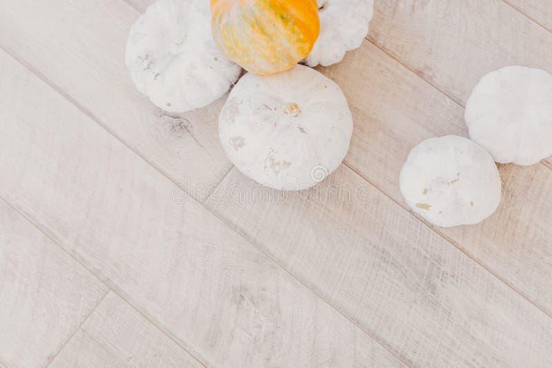 Младенец освистывает белые тыквы на ярком деревянном столе стоковое фото rf