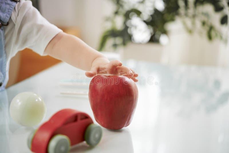 Младенец принимая красное яблоко стоковая фотография rf