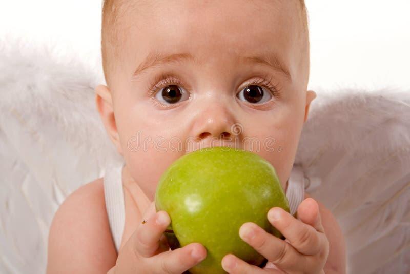 младенец яблока есть удерживание стоковая фотография rf