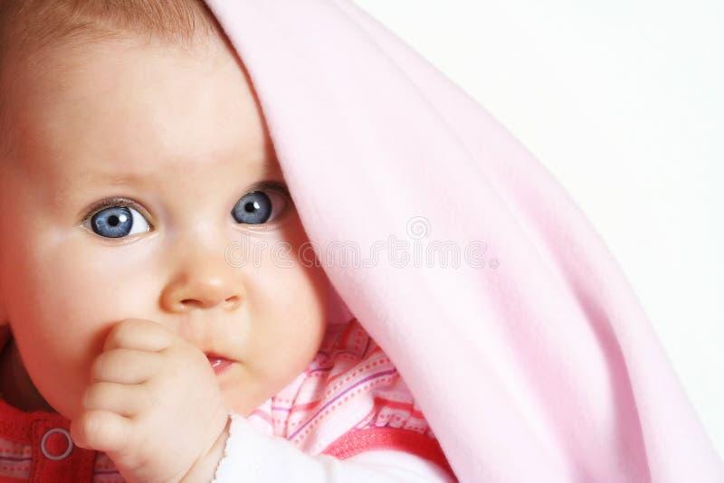 младенец 5 месяцев старого портрета стоковые фотографии rf