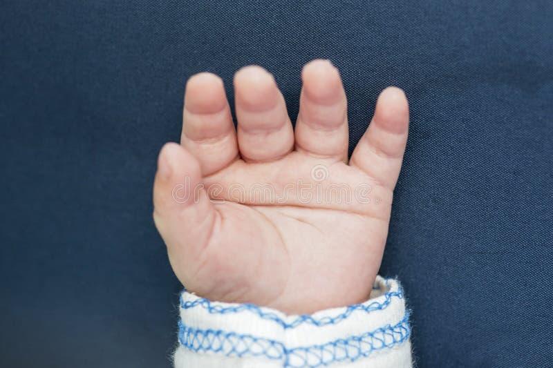 Младенец Smof newborn Младенческие пальцы и ладонь Немногое рука младенца на голубой руке backgroundall стоковые изображения