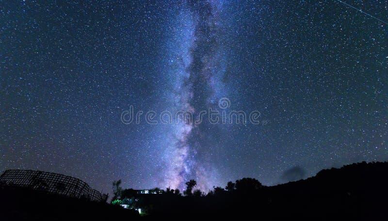 Млечный путь и дерево Изумительная сельская сцена с звёздным небом стоковое фото