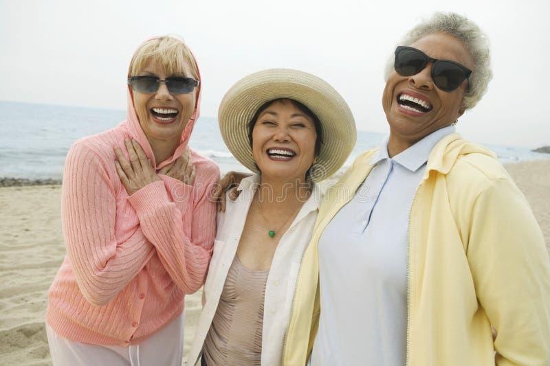 Многонациональные женские друзья смеясь над на пляже стоковая фотография rf