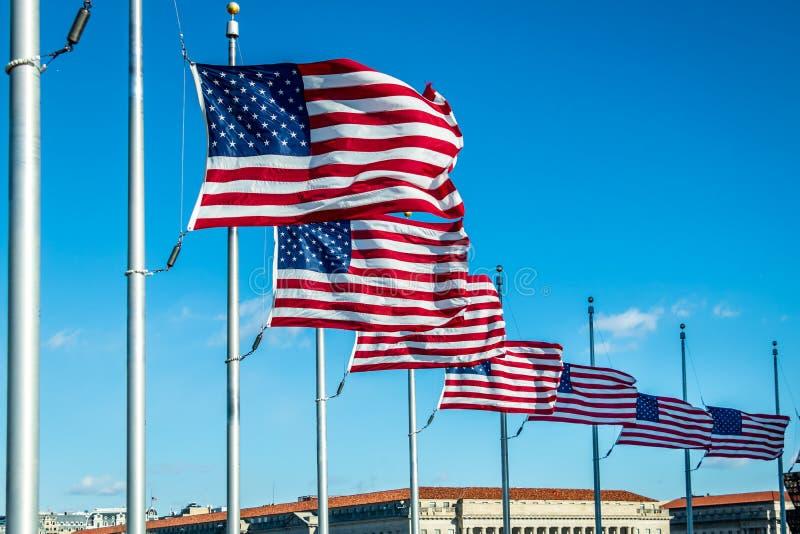 Много американских флагов развевая на памятнике Вашингтона - Вашингтоне, d C , США стоковое изображение rf
