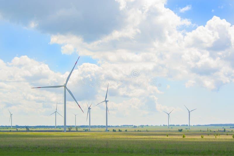 Много больших и высоких ветрянок на солнечном дне на зеленом поле Генераторы альтернативной энергии Энергия ветра Экологичность,  стоковые изображения rf