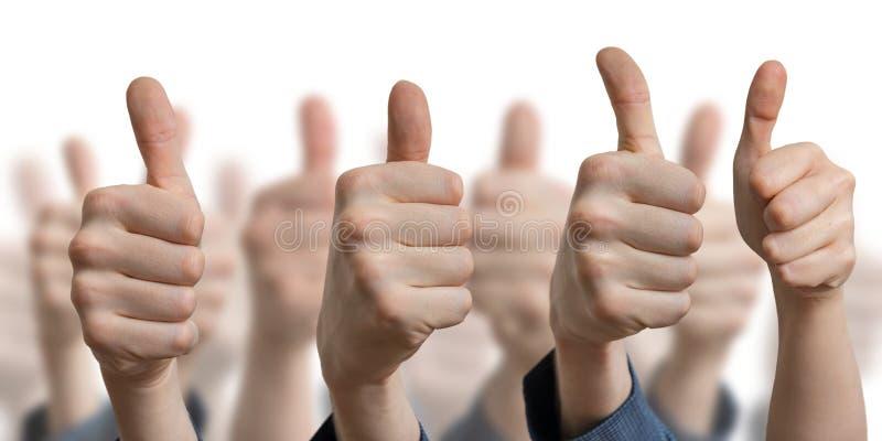 Много больших пальцев руки вверх на белой предпосылке Концепция успеха и согласия стоковая фотография rf