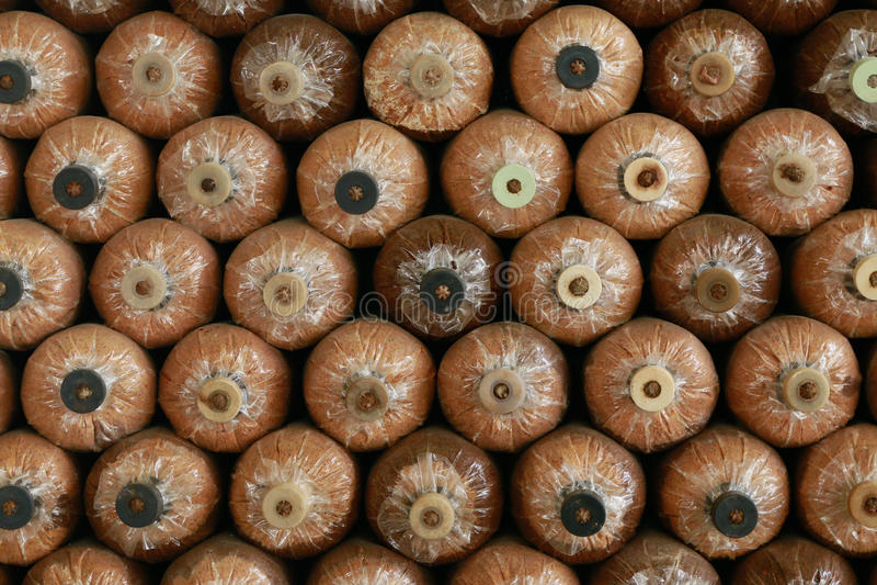 Много бутылка гриба на доме гриба стоковая фотография