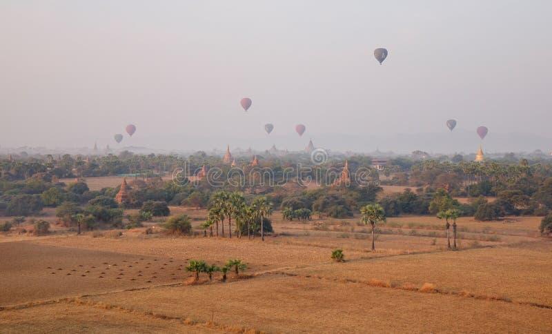 Много горячих воздушных шаров летая над висками в Bagan, Мьянме стоковое изображение rf