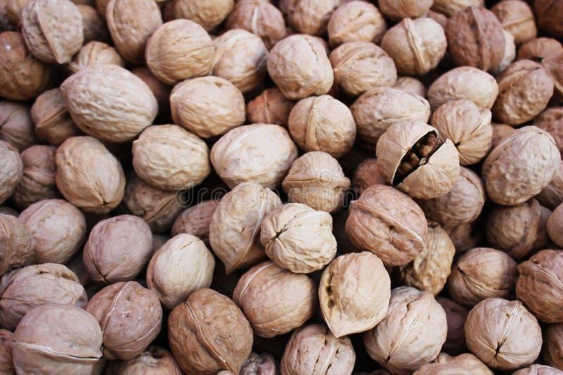 Много грецкие орехи в куче стоковая фотография rf