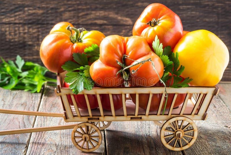 Много зрелых томатов и петрушка в тележке стоковое изображение