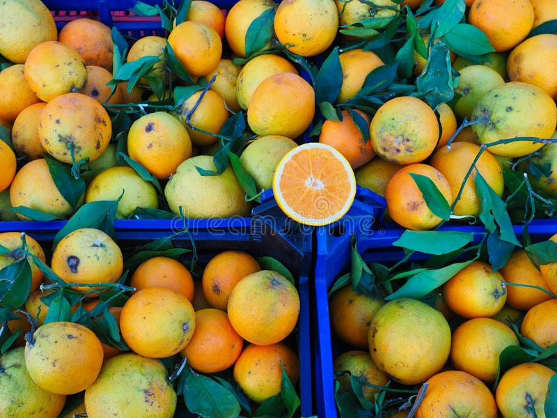 Много некрасивых апельсинов в пластиковых клетях на свежем рынке фрукта и овоща стоковое изображение rf