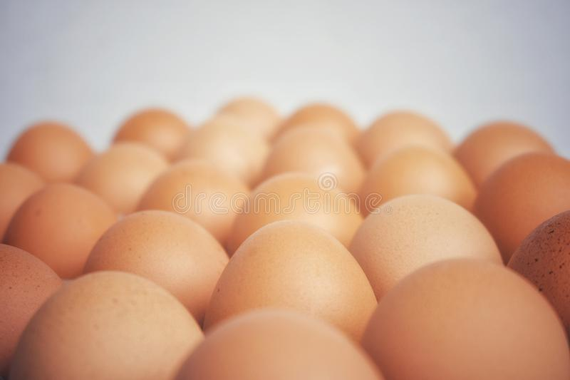Много свежий сырцовый цыпленок яичка выровнянный вверх по в ряд стоковое фото rf