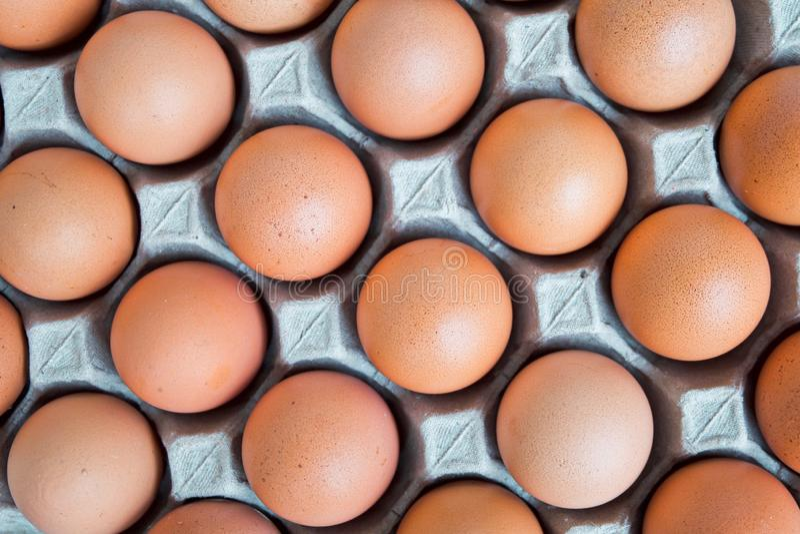 Много свежий сырцовый цыпленок яйца выровнялся вверх в ряд Flatlay или взгляд сверху стоковые изображения rf