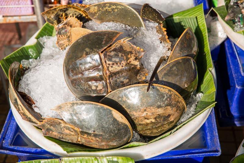 Много свежих сутенеров проданы в рынке морепродуктов r Пряный салат яйца краба подковы, салат яйца сутенера Тайский продукт моря стоковые изображения