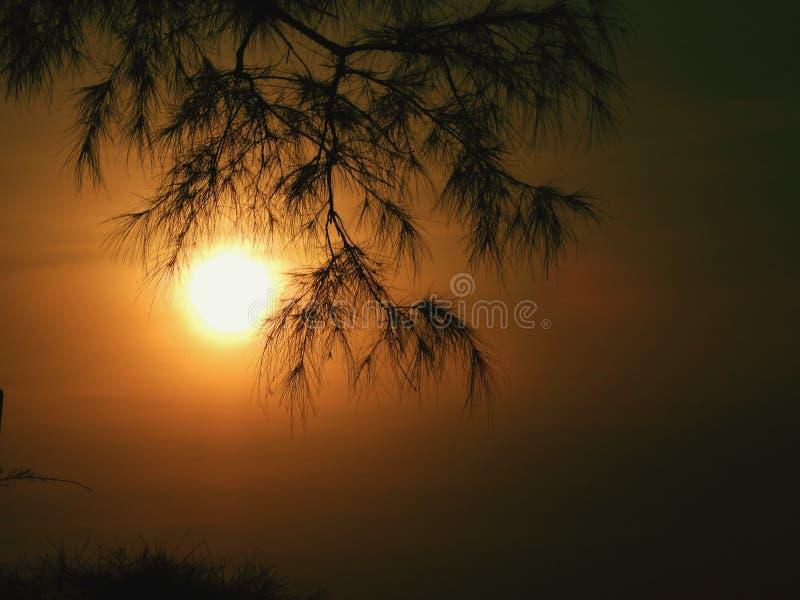 Много смогите случиться над заходом солнца! стоковые изображения rf