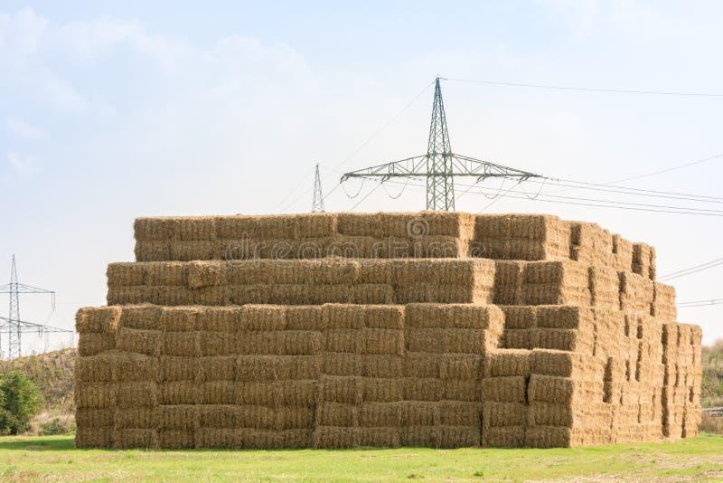 Много штабелированных связок сена на поле стоковая фотография rf