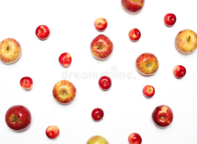Много яблок приносить на белой предпосылке стоковые фото