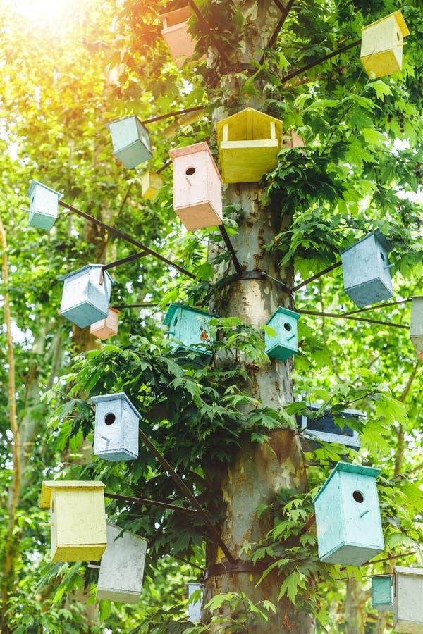 Много Birdhouses других цветов на дереве стоковое фото rf