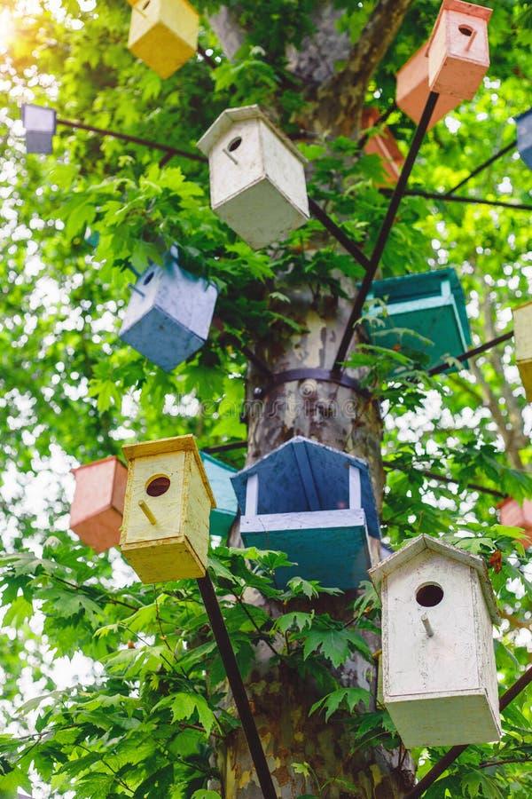 Много Birdhouses других цветов на дереве стоковые изображения