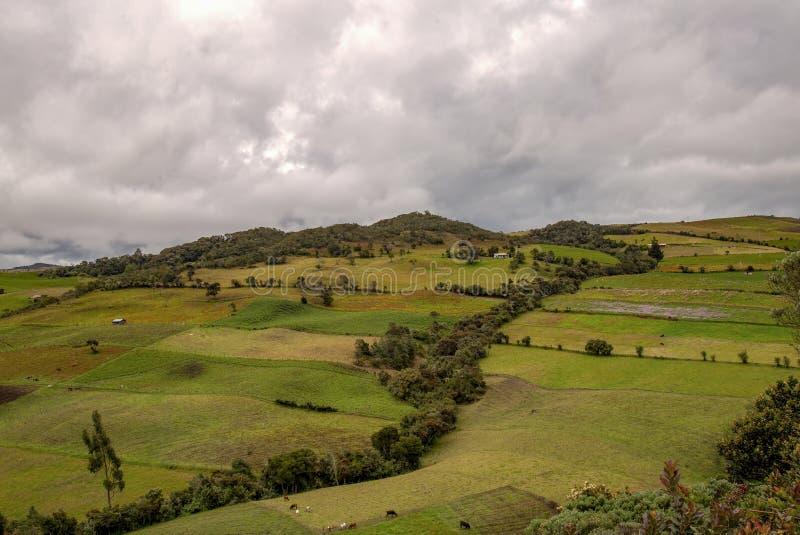 Множественная выдержка сельскохозяйственных угодиь в высоких горах стоковая фотография rf