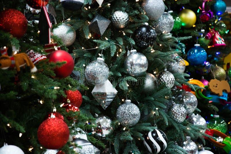 Множественные рождественские елки стоковые изображения rf