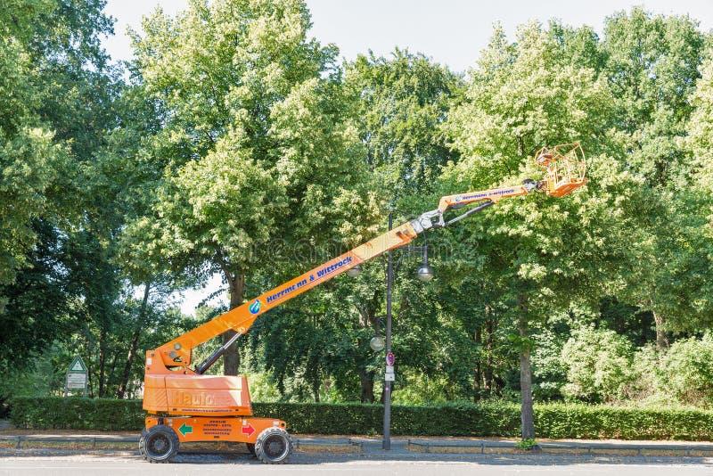 Мобильный кран для утески дерева в парке Tiergarten berlin Германия стоковая фотография rf