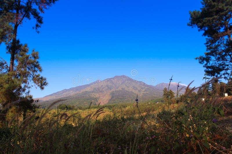 Могущественная гора в East Java стоковое фото rf