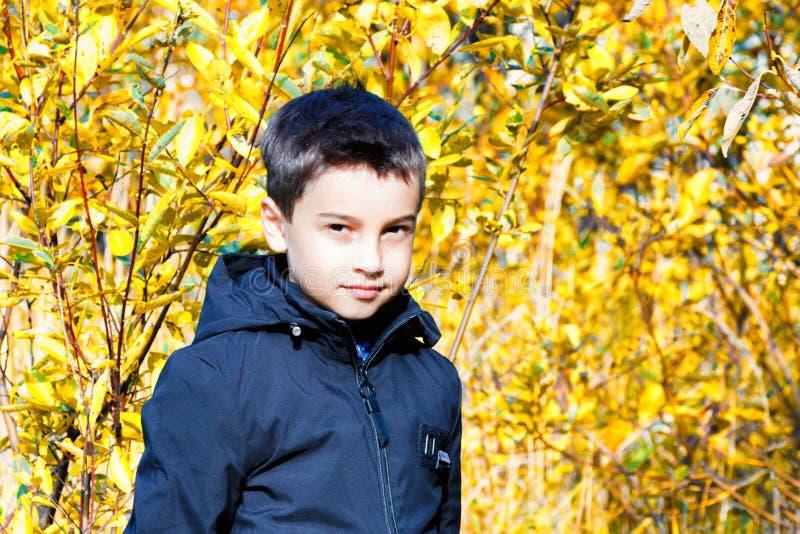 Мода ` s детей одежда ` s детей осени мальчик в черной куртке на желтой предпосылке Неофициальный стиль стоковые фото