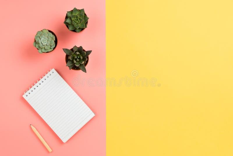 Модель-макет дела с тетрадью, суккулентными цветками и карандашем стоковое изображение