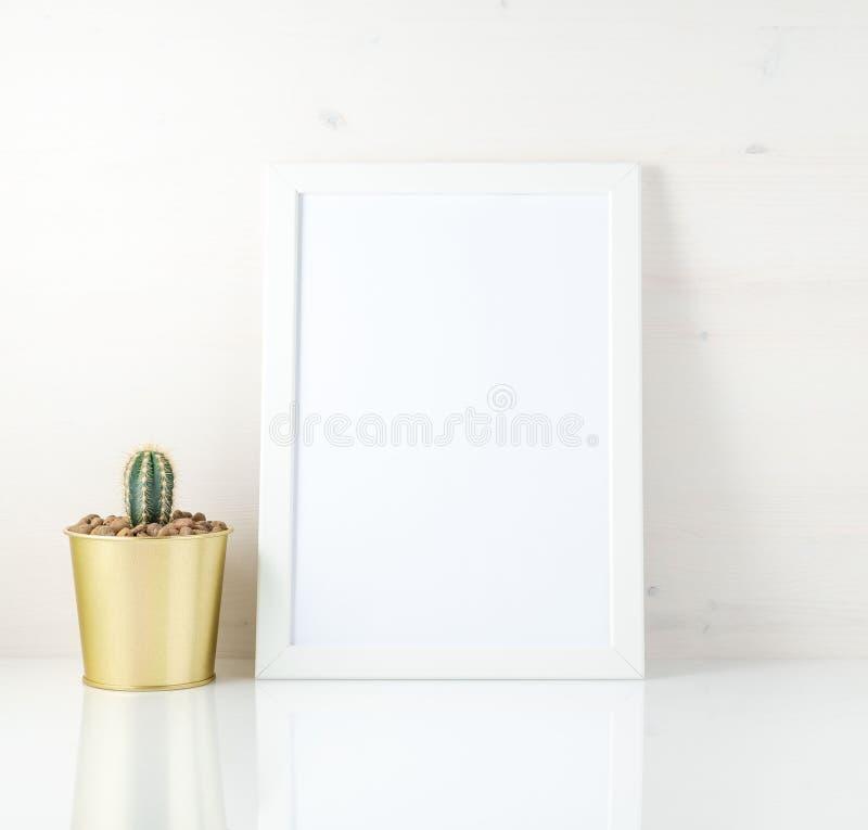 Модель-макет с чистой белой рамкой и succulent на белой предпосылке стоковое изображение