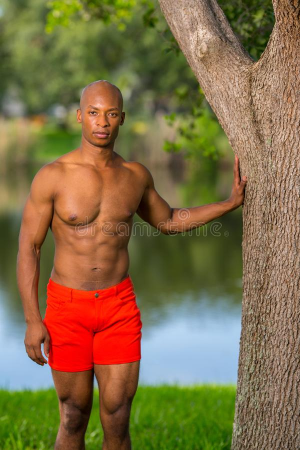 Модель фитнеса представляя в ярких красных шортах на установке парка стоковое изображение rf
