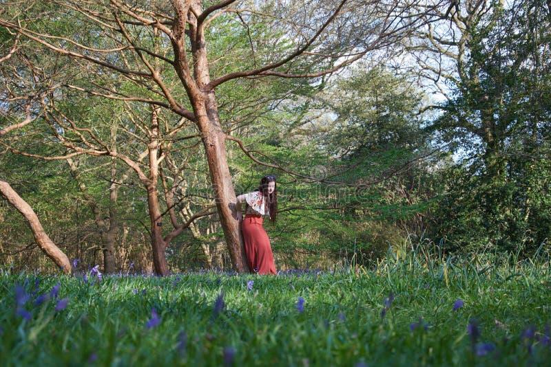 Модная дама полагается против дерева в английском полесье в предыдущей весне, с bluebells на переднем плане стоковые фото