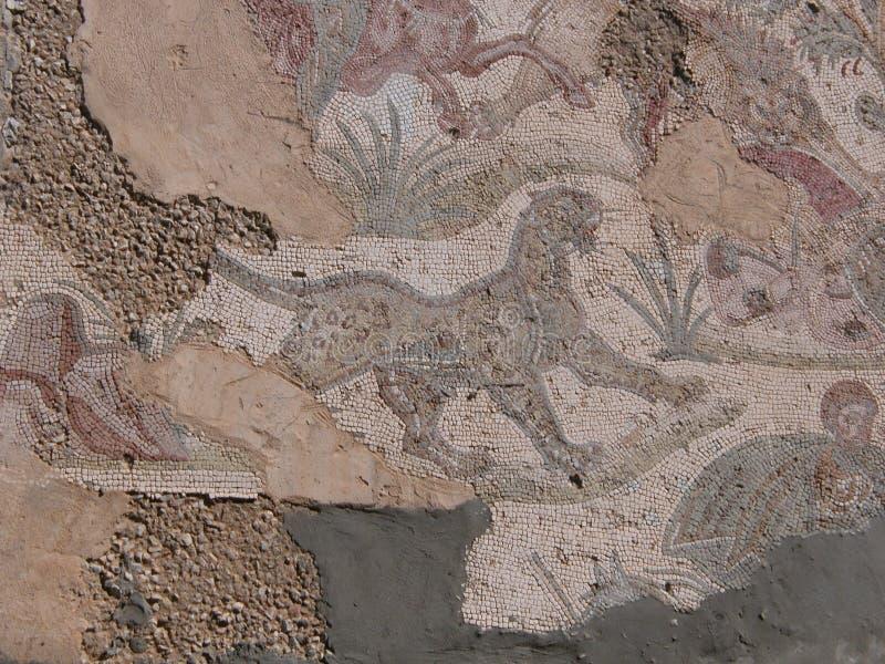 Мозаика в Карфагене стоковая фотография rf