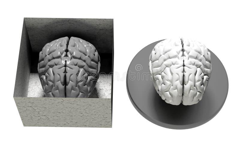 Мозг в и из коробки бесплатная иллюстрация
