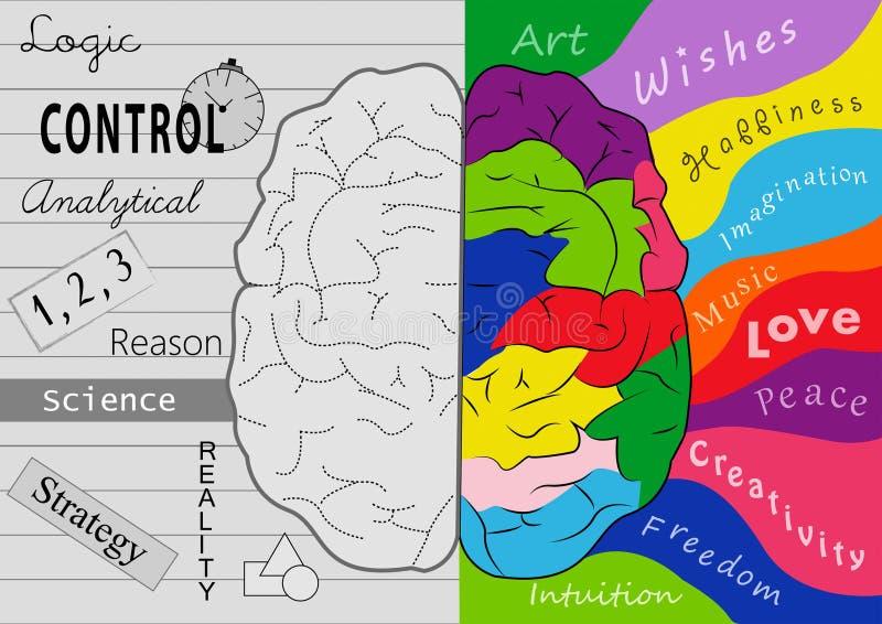 Мозг творческих способностей иллюстрация вектора