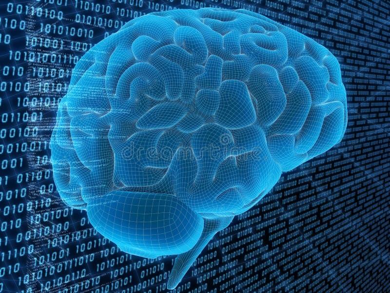 мозг цифровой иллюстрация штока