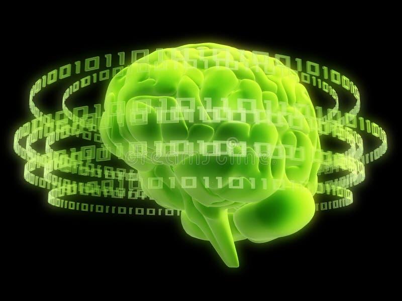 мозг цифровой иллюстрация вектора