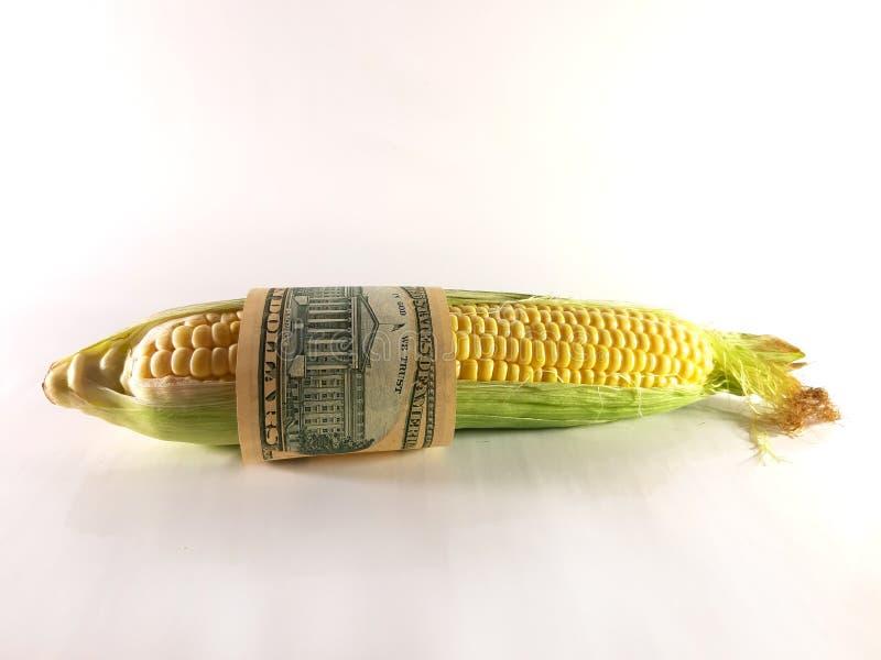 Мозоль и доллары Еда и деньги Сбор, продажа, доход стоковые изображения rf