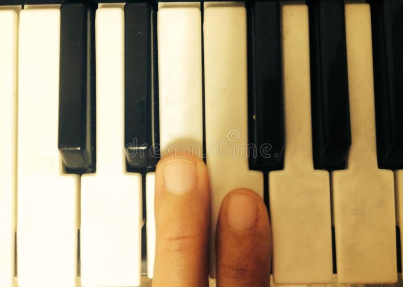 Мои ключи рояля стоковое фото rf