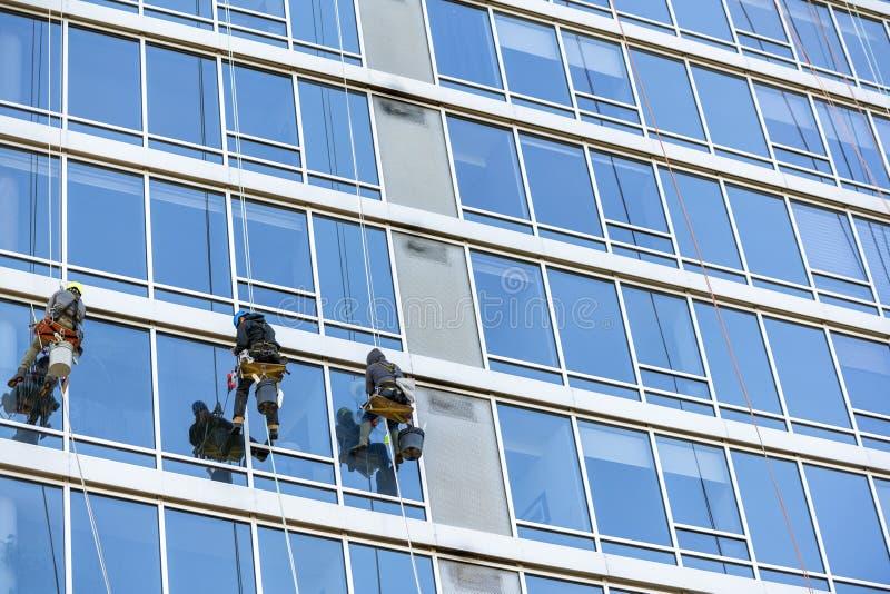Мойщики окон моют окна небоскреба сидя на вися местах стоковая фотография