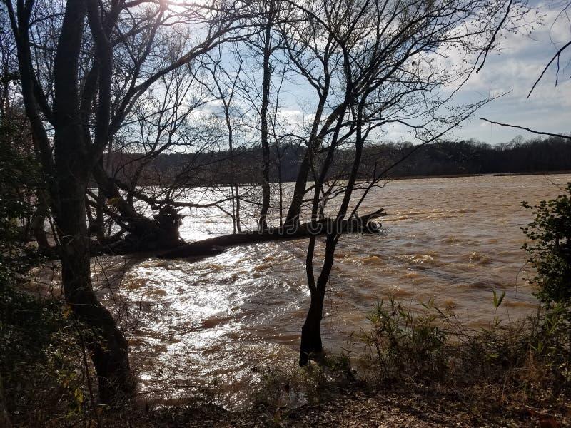 Мой взгляд реки мое любимое южное секретное время семьи самое лучшее время стоковые изображения rf