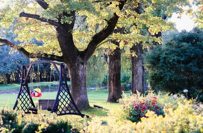 Мой сад с 4 большими дубами стоковые фотографии rf