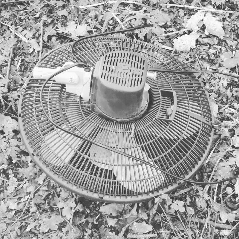 Мой самый большой вентилятор стоковые изображения rf