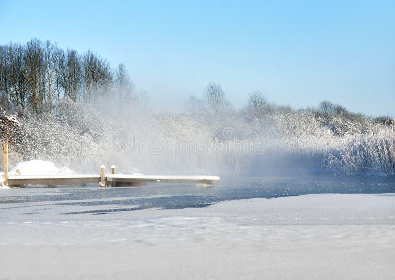 Мола в озере в зиме стоковые изображения