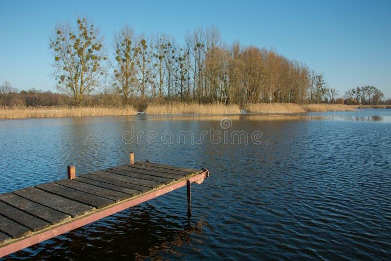 Мола с планками на спокойном озере Деревья и тростники на береге и ясн стоковое фото