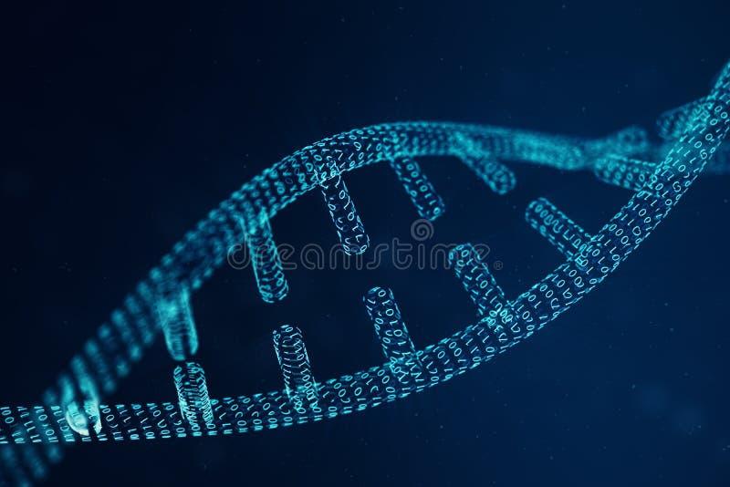 Молекула дна цифров, структура Человеческий геном бинарного кода концепции Молекула дна с доработанными генами иллюстрация 3d стоковые изображения