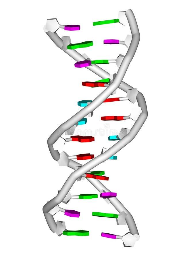 молекула дна бесплатная иллюстрация